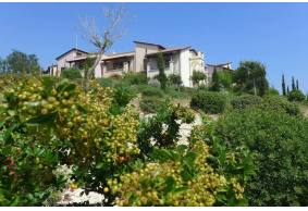1 bedroom apartment ground floor with big space in Aphrodite Hills